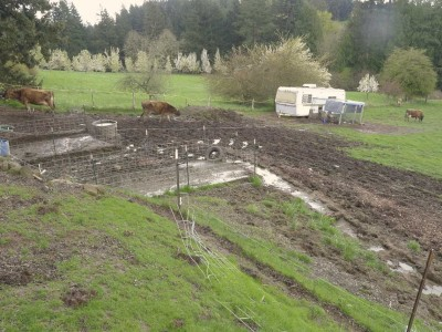 "Muddy fields with a deluxe chicken ""coop"" in the background."