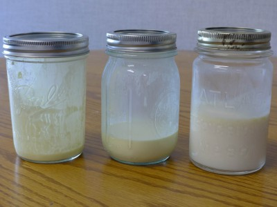 Milk jars from customer households – one of which tested positive for E. coli O157:H7.